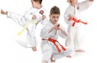 Taekwondo, Age: 3.5 – 6 years
