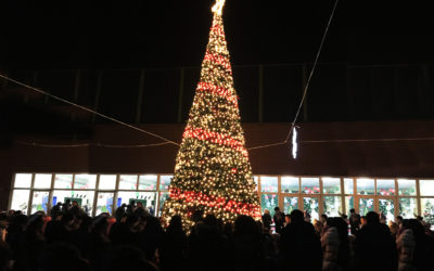 好思之家举办首届圣诞亮灯仪式!