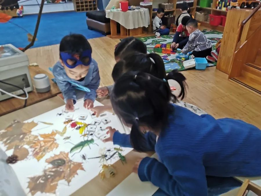 "Parents Education Series | The ""Loose Parts"" in Reggio Emilia."